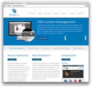 efinity website1