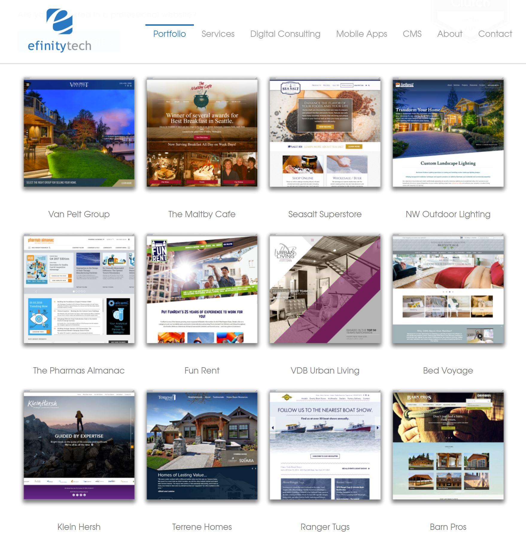 Efinitytech Portfolio