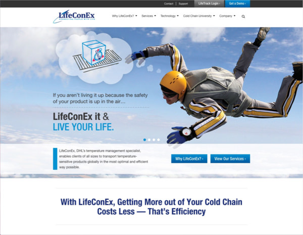 LifeConEx Website Design by Efinitytech Seattle