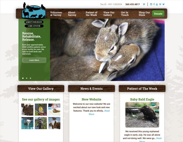 Sarvey Wildlife Website Design by Efinitytech Seattle